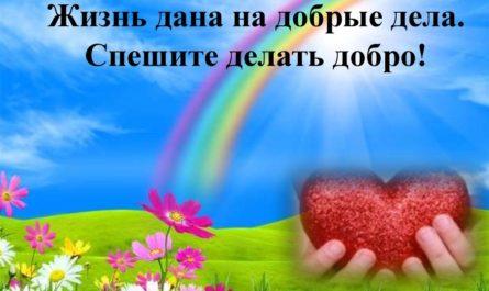 Социальная защита населения, ее формы и виды в России