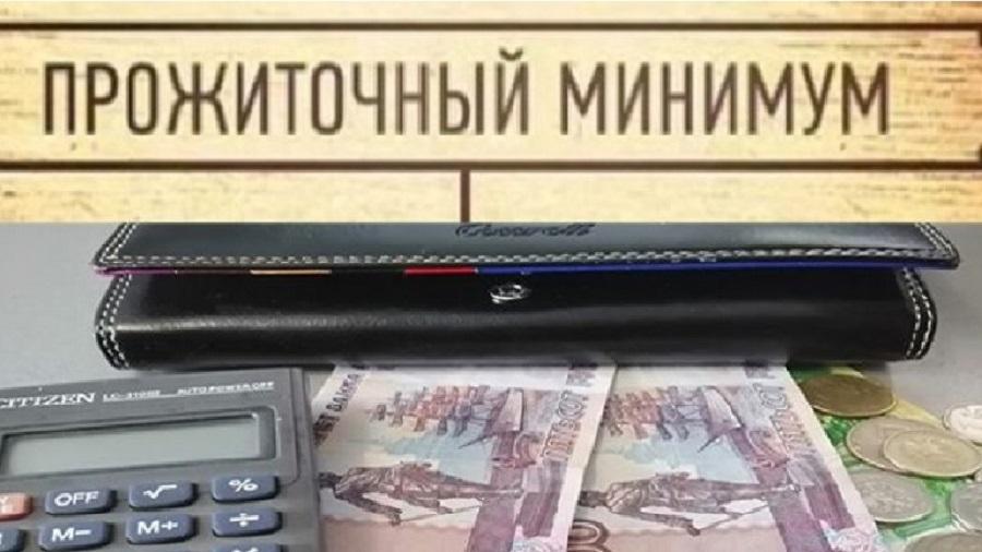 Новый прожиточный минимум в России на 2021 год