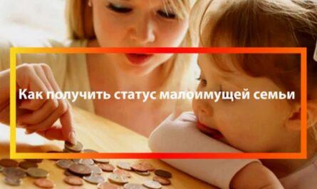 Как получить статус малоимущей семьи через Госуслуги в 2021 году