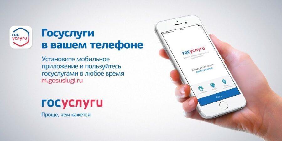 Как проверить свою компенсацию от государства при помощи смартфона?