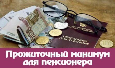 Прожиточный минимум пенсионера в 2022 году в России